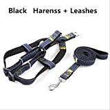 TYJY Corda Stereotipata per Colletto Indossabile Cowboy Traction Rope Cinghie Pettorali Collar Set Jean Harnesses for Dog, M