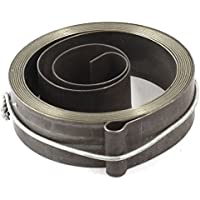 Water & Wood 20-inch Drill Press Quill Feed Return Coil Spring Assembly 7cm x 1.9cm