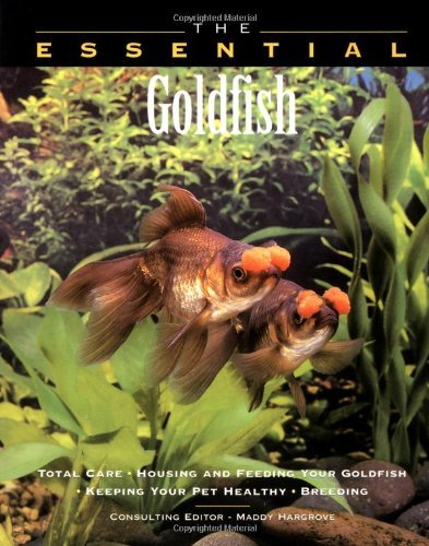 The Essential Goldfish by Maddy Hargrove (July 27,1999)