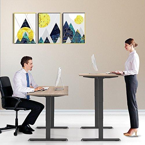 OtdAir Höhenverstellbarer Schreibtisch Elektrisch Tischgestell Schreibtisch,Passt für Alle gängigen Tischplatten