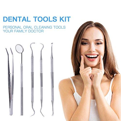 inkint Kit de 5 Herramientas Dentales de Acero Inoxidable con Estuche Higiene Bucal Profesional y Doméstico Removedor de Placa, Espejo Dental, Rasqueta de Sarro, Explorador Dental y Pinza