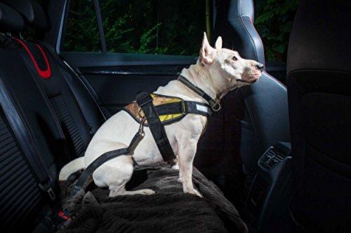 Julius-K9  16SGA-1  Sicherheitsgurtadapter für Hunde unter 25Kg, schwarz - 2