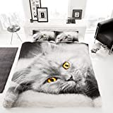 Lifestyle Production @Designer Cat