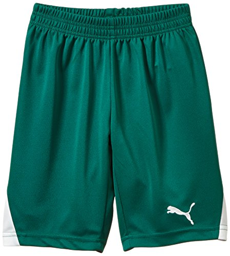 PUMA Kinder Hose Shorts without Inner Slip Team Green-white, 164