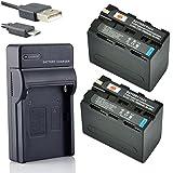 DSTE NP-F970 Li-ion Batterie (2-Pack) et chargeur USB costume pour Sony CCD-TR716 CCD-TR818 CCD-TR910 CCD-TR917 CCD-TR930 CCD-TR940