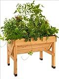 VegTrug Pflanztrog aus Holz, 1 m breit, kleine Ausführung