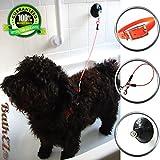 bathez Hund stabiler Baden Kabel Badewanne Zurückhaltung mit Top Performance starken Saugnapf und Kragen