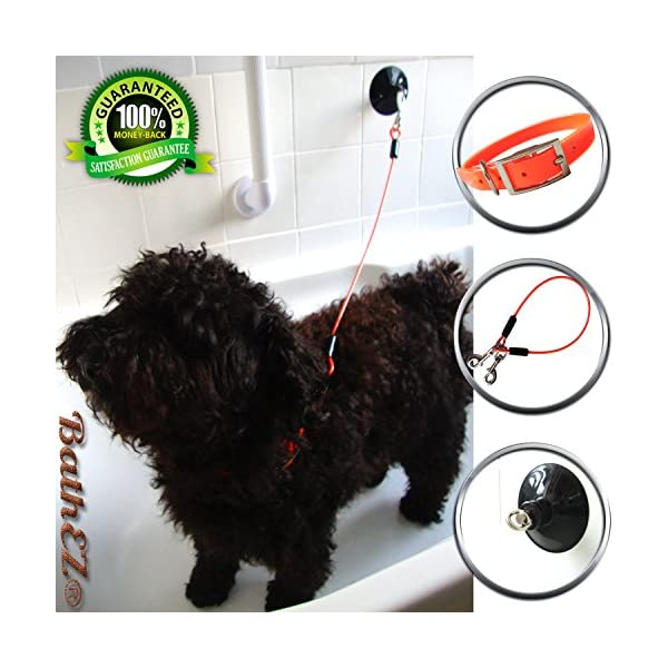 BathEz Dog Durable Bathing Cable Tub Restraint with Top Performance Strong Suction Cup and Collar 1