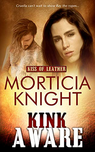 Kink Aware (Kiss of Leather Book 9) (English Edition)