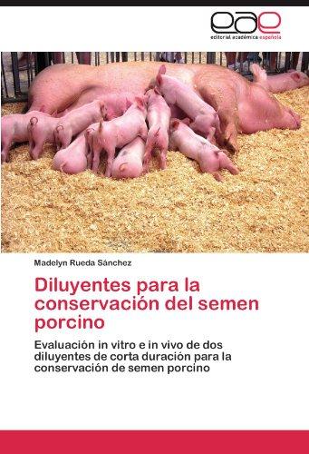 Diluyentes para la conservación del semen porcino: Evaluación in vitro e in vivo de dos diluyentes  de corta duración para la conservación de semen porcino por Madelyn Rueda Sánchez