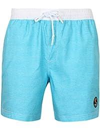 Tokyo Laundry Men's Cornwallis Faded Striped Print Swim Shorts Size S- XL