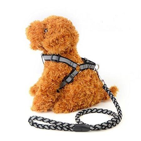 2 xarnés +correa para perro mascotas Negro