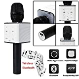 Rich N Royal Wireless Karaoke Microphone with built in Blutooth Speakers