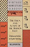 The Form and Action of the Horse's Foot - A Historical Article on Equine Anatomy