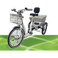 350 W Eléctrico Triciclo 2018 Modelo Especial