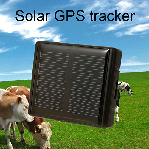 Solar GPS Tracker Schlüsselfinder Locator Class 12TCP/IP-850/900/1800/1900MHz Pet Solar Power Pferd Schaf Kuh Hund Tracker rf-v26car-styling Animal schwarz (Solar-power-gps)