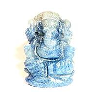 8 Mukhi Rudraksha / Eight Face Rudraksha - Nepal - Lab Certified - Collector Size
