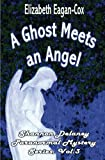 A Ghost Meets an Angel: Shannon Delaney Paranormal Mystery Series by Eagan-Cox, Elizabeth (2010) Paperback