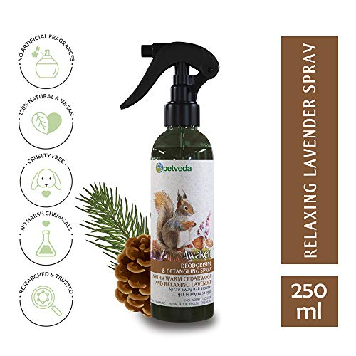 P E T V E D A Deodorant Spray for Dogs & Cats, Deodorizing Perfume Spray Long Lasting, Detangle Mist Enriched with Essential Oils of Lavender & Cedarwood, Alcohol Free, Sulphate & Paraben Free - 250 ml