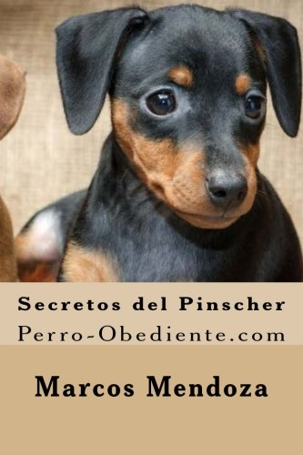 Secretos del Pinscher: Perro-Obediente.com