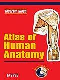 Atlas Of Human Anatomy With Cd-Rom