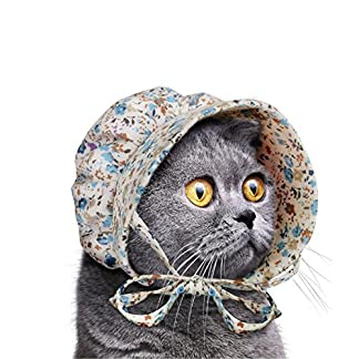 Cat Bonnet 51cjNdpWlaL