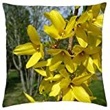 "Forsythia - Throw Pillow Cover Case (18"" x 18"")"