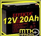 Effekta AGM Akku Batterie Typ BT 12-20i 12V 20Ah Innengewindel
