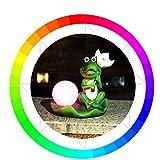 OOFAY& LED Luces De Jardín Personalidad Rana RGB 7 Colores Cambio Resina Impermeable Destacar...