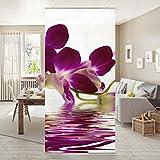 Flächenvorhang Set Pink Orchid Waters 250x120cm | Schiebegardine Schiebevorhang Raumtrenner Vorhang Raumteiler Gardine Paravent Wandbild XXL Deko Dekor | Größe HxB: 250x120cm inkl. transparenter Halterung