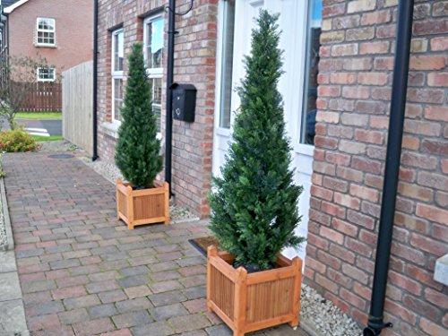 Best Künstliche Zypresse, 150 cm, Zedernholz, 2 Stück
