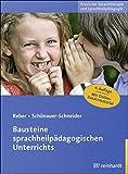 Bausteine sprachheilpädagogischen Unterrichts (Praxis der Sprachtherapie und Sprachheilpädagogik 2)