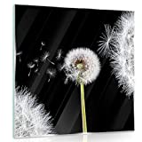Delester Design gt10165g7Wanddekoration Pusteblumen Lenkrad Wind auf Boden Glas bunt 40x 40x 1,60cm