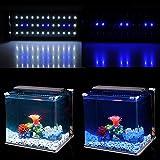 NICREW LED Aquarium Beleuchtung, LED Aquarien-Aufsetzleuchte Passend für Aquarien von 30cm-48cm, 6W - 8