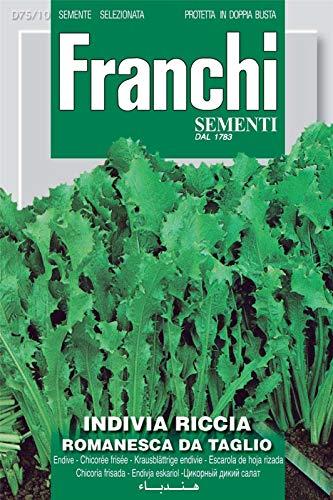 Portal Cool Samen Franchi von Italien - Endivien - Romanik Schneiden - Seeds