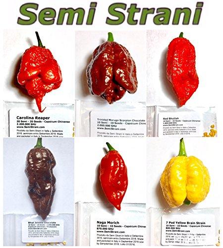 60-semi-di-peperoncino-delle-6-variet-pi-piccanti-del-mondo-collezione-6-piccola-guida-coltivazione-