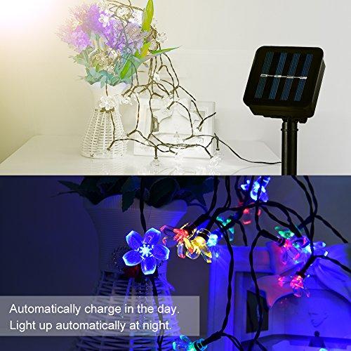LEDGLE 7M Solar Lichterkette LED Blumen String Licht, 50 LED Lichter,4 Farben 8 Leucht-Modi, 8 Beleuchtungsmodi, IP65 wasserdicht - 4