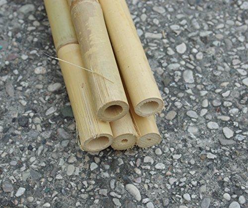 Tutores guías de caña de bambú de 2 metros