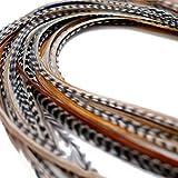 20XXL Lang 27,9–33cm (28–33cm) mit echten Federn Hair Extensions + Ringe & Schleife
