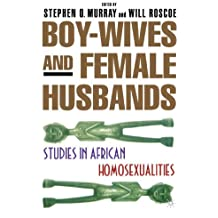 Boy-Wives and Female Husbands: Studies of African Homosexualities by NA NA (2001-02-03)