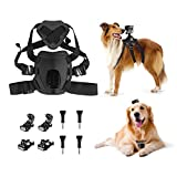 Rhodesy Fetch Dog Harness Imbracature Cane Accessori Kit Fascia Toracica + J-gancio Fibbia + Fibbia a Sgancio Rapido Superficie per GoPro Hero 6 Hero 5