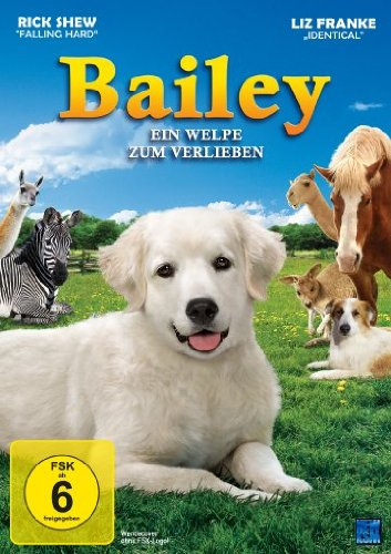 bailey-ein-welpe-zum-verlieben
