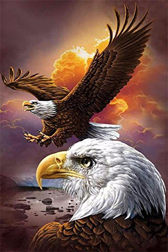 5D DIY Diamond Painting by Numbers Kits, Crystal Embroidery Cross Stitch Rhinestone Mosaic Drawing Art Craft Home Wall Decor, Eagle 11.8*17.7 Inch