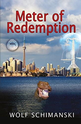 Meter of Redemption (The Meter Series Book 3) (English ...