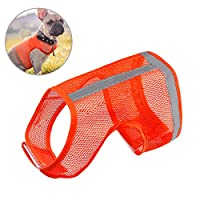 Biqing Hi Vis Vest Dog Safety Reflective Vest,High Visibility Vest For Pets Dogs Outdoor Activity(X-Large)
