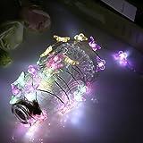 ZISTE Schimmer Lichterkette, Dekorationen für Partys, Weihnachten, Haus, Hochzeit, Tisch, 40 LEDs Lichter, 10ft, Schmetterling-Form, Buntes Licht(Rot, Gelb, Grün, Lila)