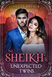 The Sheikh's Unexpected Twins - A Secret Baby Romance