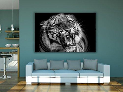 Cuadro PVC Impresión Digital Tigre Multicolor 100