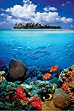 Sea Life Island Natur Poster Foto Fantasy Naturwelt Natur Fische Korallenriff 61x91,5 cm