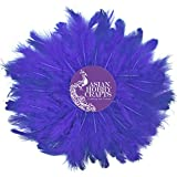 #8: Asian Hobby Crafts Natural Dyed Feathers, Purple (80 Pieces)